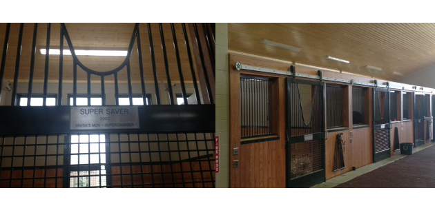 EPCO GFF Fixture Lights Largest Stallion Barn in North America